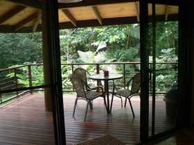 Cape Trib Exotic Fruit Farm Bed and Breakfast - Accommodation Gold Coast