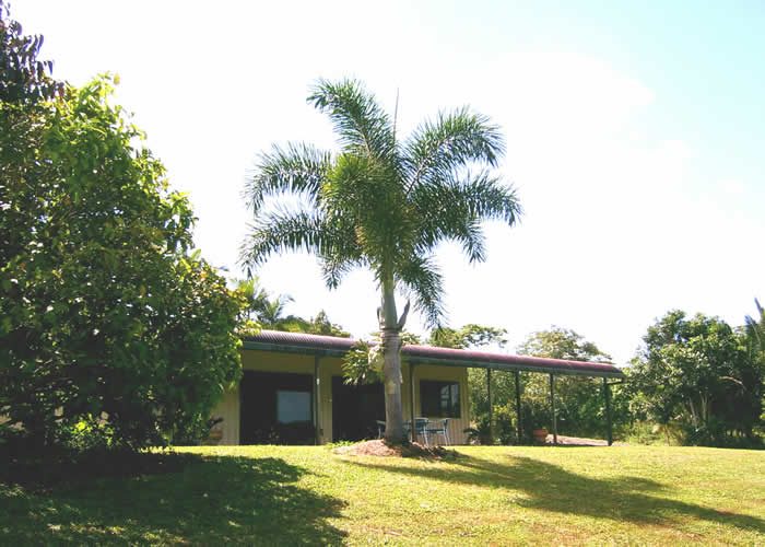 Daintree Mountain View Retreat and Vanilla Beans - Accommodation Gold Coast
