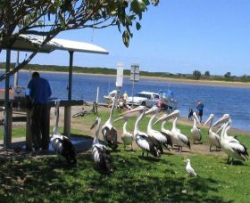 Mountain View Caravan and Mobile Home Village - Accommodation Gold Coast