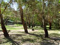 Woods Reserve - Accommodation Gold Coast