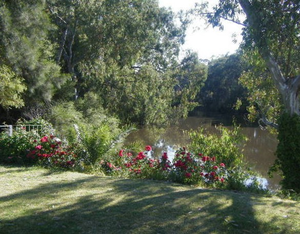 Bidgee Bankside Cottage - Accommodation Gold Coast