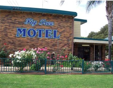 Fig Tree Motel - Accommodation Gold Coast