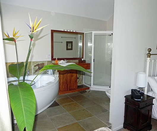 Airlie Waterfront Bed and Breakfast - Accommodation Gold Coast