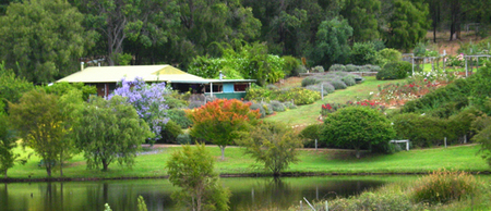 Lavender and Berry Farm - Accommodation Gold Coast
