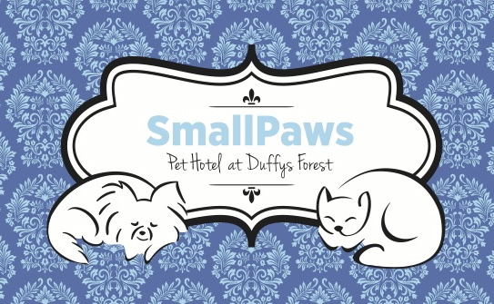 SmallPaws Pet Hotel - Accommodation Gold Coast