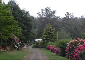 Mountain Rivers Lodge - Accommodation Gold Coast
