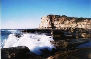 Terrigal Lagoon Bed and Breakfast - Accommodation Gold Coast