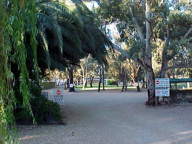 Kingston-On-Murray Caravan Park - Accommodation Gold Coast
