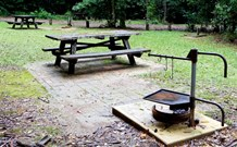 Bellbird campground - Accommodation Gold Coast