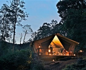 nightfall wilderness camp - Accommodation Gold Coast
