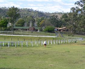 Kellarni Downs Farmstay-Scenic Rim - Accommodation Gold Coast