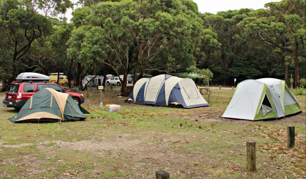 Pretty Beach Campground Murramarang National Park - Accommodation Gold Coast