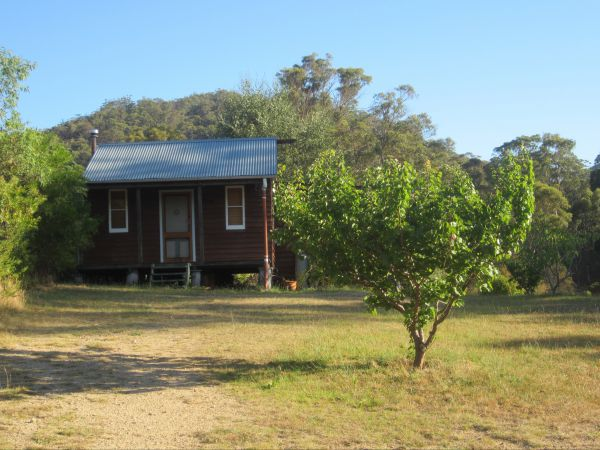 Peach Tree Cabin - Accommodation Gold Coast