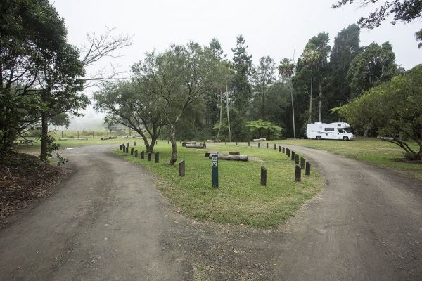 Eungella National Park Camping Ground - Accommodation Gold Coast