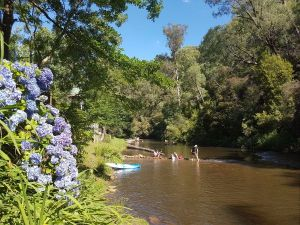 Jamieson Caravan Park - Accommodation Gold Coast