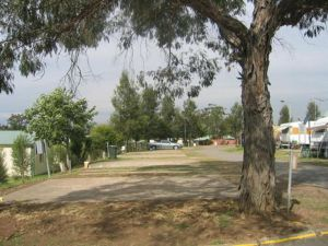 Country Acres Caravan Park - Accommodation Gold Coast