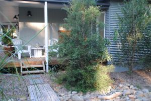 Native B and B - Callala Bay - Accommodation Gold Coast