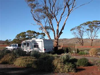 Fraser Range Sheep Station - Accommodation Gold Coast
