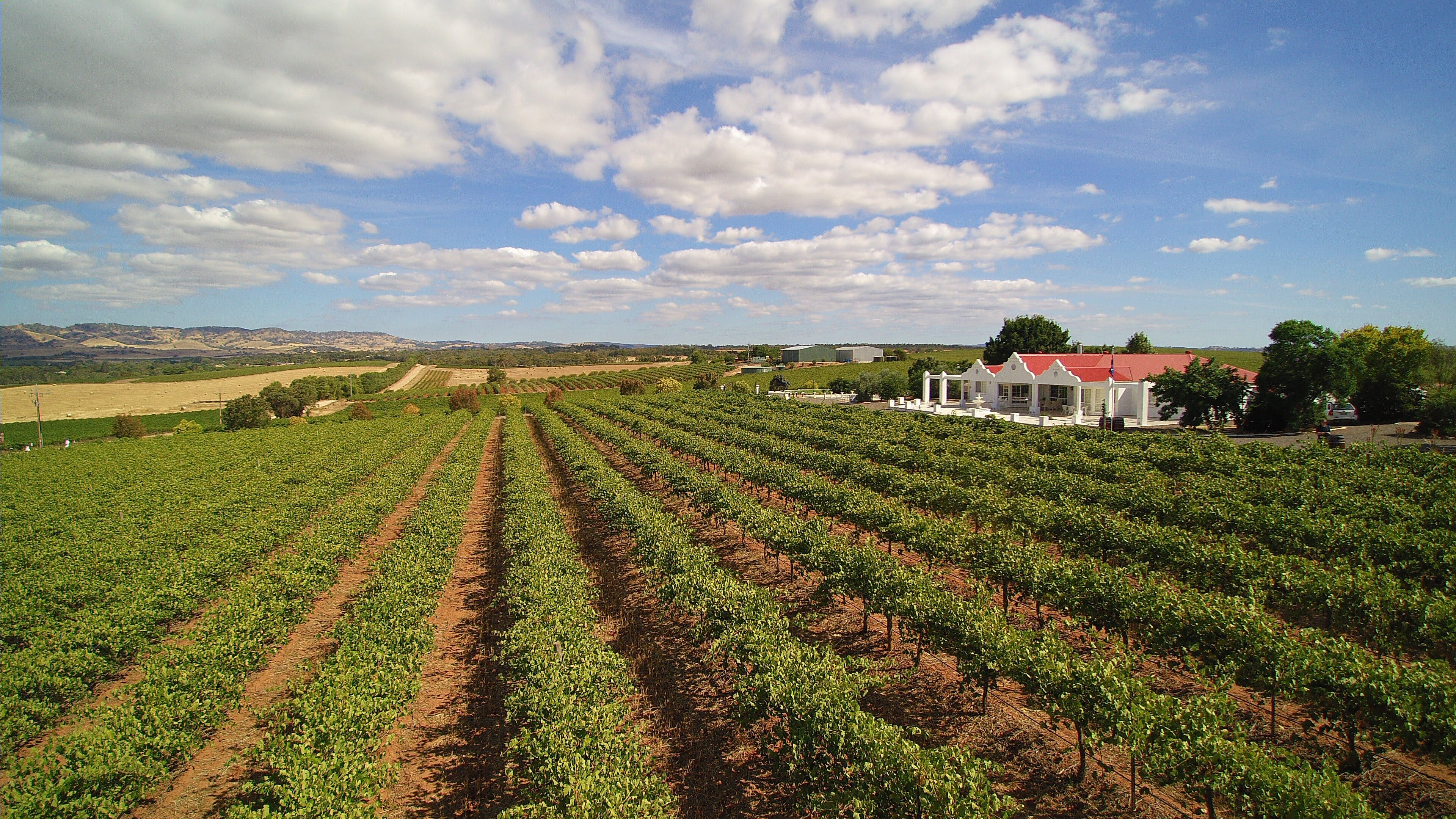 1837 Barossa Luxury Vineyard Cottages - Accommodation Gold Coast