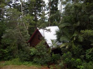 Turkeys Nest Rainforest Cottages Mt Glorious - Accommodation Gold Coast