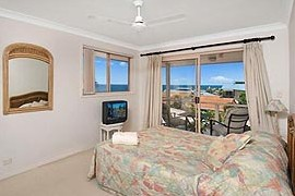 Allez Pacific Rose - Accommodation Gold Coast