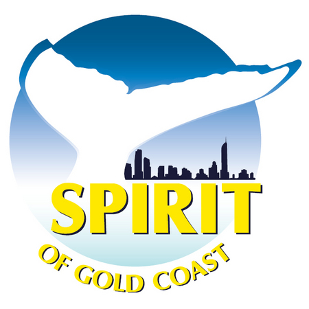 Spirit of Gold Coast Whale Watching - Accommodation Gold Coast