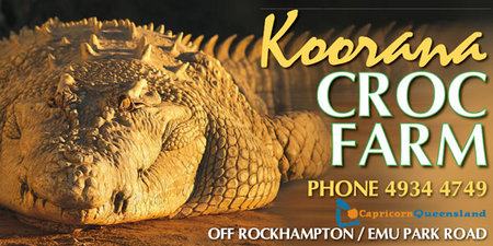 Koorana Saltwater Crocodile Farm - Accommodation Gold Coast