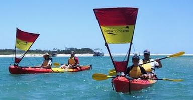 Kayak Noosa - Accommodation Gold Coast