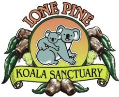 Lone Pine Koala Sanctuary - Accommodation Gold Coast