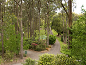 Mount Lofty Botanic Garden - Accommodation Gold Coast
