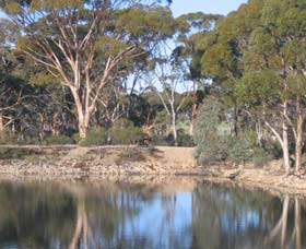 Merredin Railway Dam - Accommodation Gold Coast
