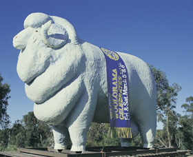 Giant Ram Tourist Park - Accommodation Gold Coast