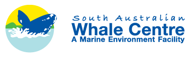 South Australian Whale Centre - Accommodation Gold Coast