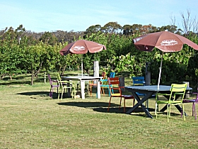 Cerise Brook Orchard  Family Golf - Accommodation Gold Coast