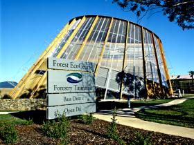 Forest EcoCentre - Accommodation Gold Coast