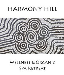 Harmony Hill Wellness and Organic Spa Retreat - Accommodation Gold Coast