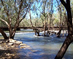 Low Level Nature Reserve - Accommodation Gold Coast