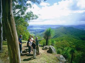 Gold Coast Hinterland Great Walk - Accommodation Gold Coast