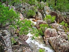 Crows Nest National Park - Accommodation Gold Coast