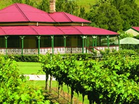OReillys Canungra Valley Vineyards - Accommodation Gold Coast