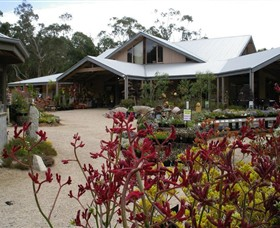 Kuranga Native Nursery and Paperbark Cafe - Accommodation Gold Coast