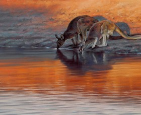 Steve Morvell Wildlife Art - Accommodation Gold Coast