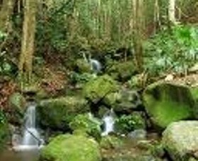 Budderoo National Park - Accommodation Gold Coast