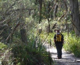 Barren Grounds Nature Reserve - Accommodation Gold Coast