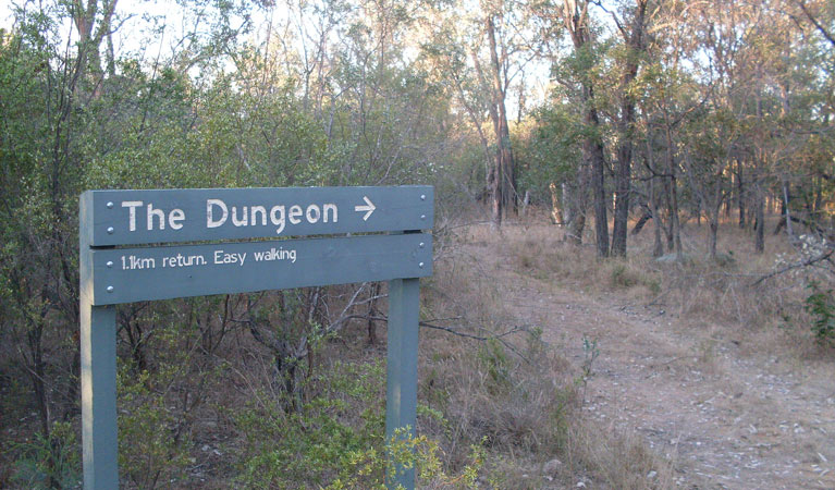 Dungeon lookout - Accommodation Gold Coast