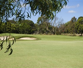 Curlewis Golf Club - Accommodation Gold Coast