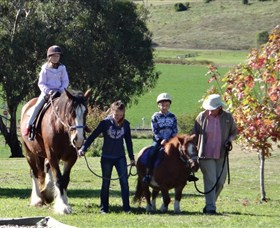 Bathurst Farm Experience - Accommodation Gold Coast