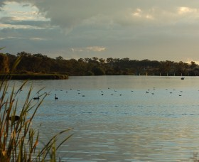 Lake Inverell Reserve - Accommodation Gold Coast
