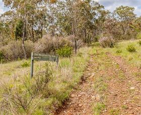 Old Mountain Road Walking Track - Accommodation Gold Coast