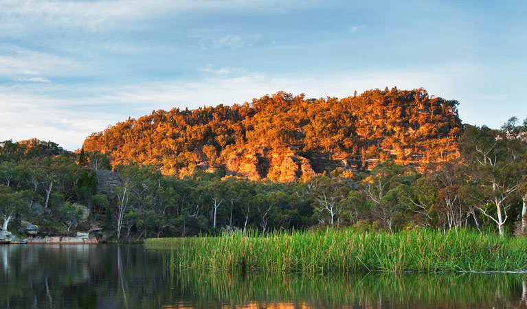 Wollemi National Park - Accommodation Gold Coast